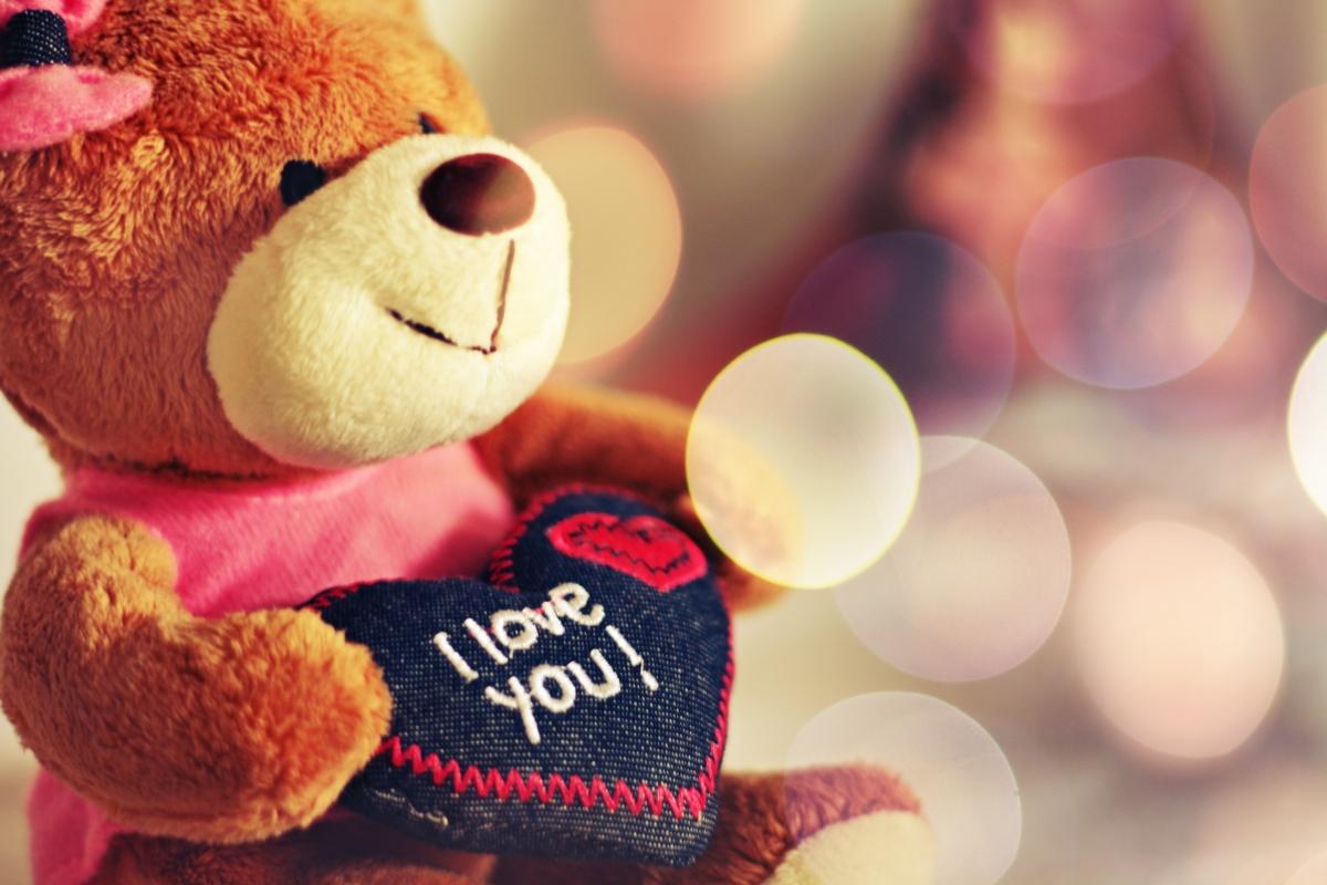 Սեր|Love|Любов 23․01․13